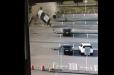 Եկատերինբուրգի օդանավակայանում տաքսին մեծ արագությամբ ընթանալով բախվել է պատնեշին և երեք անգամ պտտվել օդում (տեսանյութ)