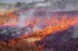 Հրշեջ-փրկարարները մարել են 76 հա խոտածածկ տարածքներում բռնկված հրդեհներ