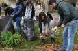 Երևանում կտնկվի շուրջ 5000 ծառ. մարտի 23-ին կանցկացվի շաբաթօրյակ-ծառատունկ