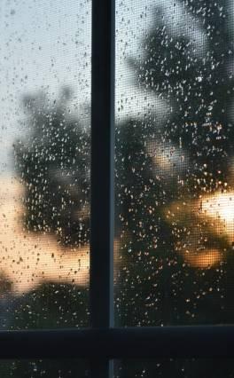 Սպասվում է անձրև և ամպրոպ. առաջիկա օրերի եղանակային կանխատեսումները
