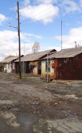 Գյումրու տնակային ավաններում ոջիլ է տարածված. պայքարն արդյունք չի տալիս