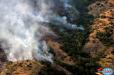 Լիճք գյուղի մոտ այրվել է շուրջ 8 հա անտառածածկ և 3 հա խոտածածկ տարածք